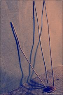 sticks 1