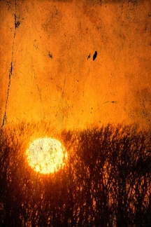 sundown 1.23jpg